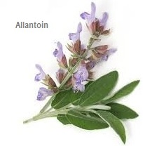 Allantoin compound
